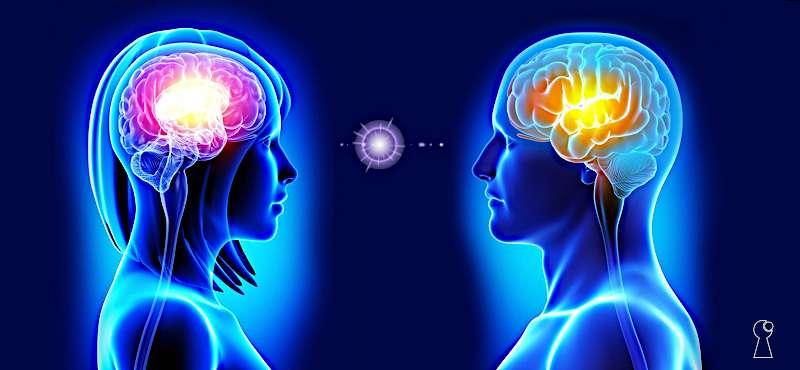 Cosa succede al cervello quando hai una cotta oppure ti ecciti?